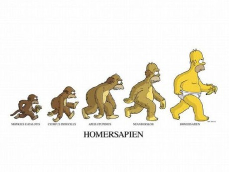 Homersapian evolution